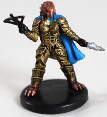 Female Dragonborn Rogue