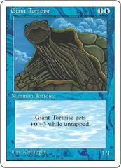 Giant Tortoise (French) (C)