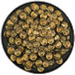 Hoard Scarab Larva Swarm