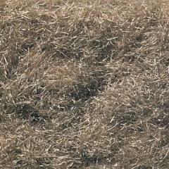 Burnt Grass (Shaker)