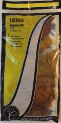 Lichen - Autumn Mix (Small Bag)