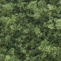 Medium Green (Shaker)