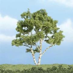 "Premium Trees - Birch (3 7/8"")"