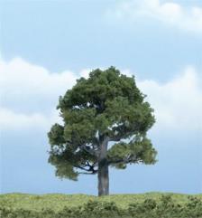 """Premium Trees - Oak (3"""")"""
