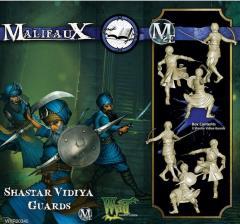 Shastar Vidiya Guards (2017 Edition)