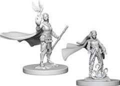 Elf Female Druid