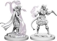 Tiefling Female Sorcerer