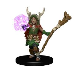 Boy Druid w/Tree Companion