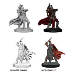 Female Knights/Grey Maidens