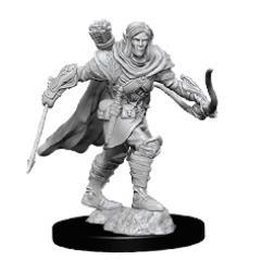 Half-Elf Male Ranger