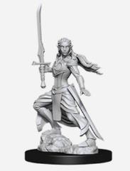 Elf Female Paladin