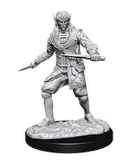 Elf Male Rogue