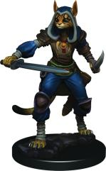 Tabaxi Female Rogue