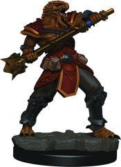 Dragonborn Male Fighter