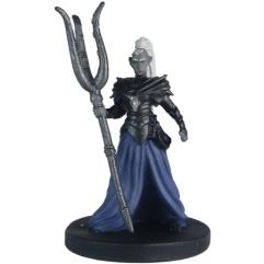 Drow Elite Warrior