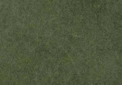 Swamp Grass