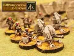 Support Platform Platoon