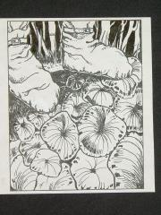 """A3 - Black Jelly Oyster - 3.5"""" x 4"""" Original Ink"""