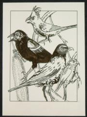 "#19 - Demonic Birds - 3.5"" x 4.5"" Original Ink"