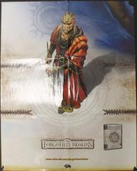 Forgotten Realms 3rd Edition Promo Poster