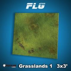 3' x 3' - Grasslands #1