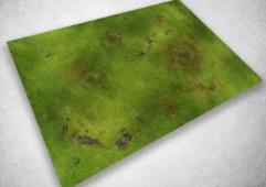 6' x 3' - Grasslands #1