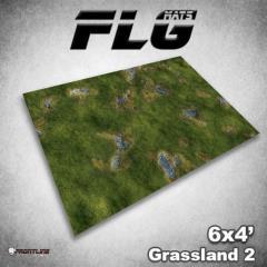 6' x 4' - Grasslands #2
