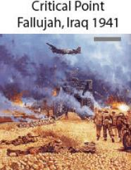 Critical Point - Falluja, May 1941