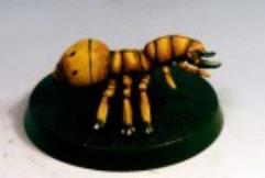 Monster Beetles