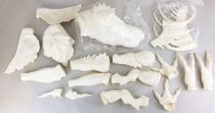Mohawk Gremlin Model Kit