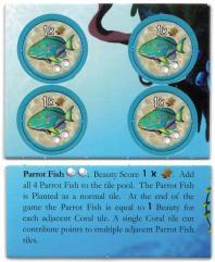 Octopus' Garden - Parrot Fish Promo