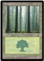 Forest - Ver. 3 (C)