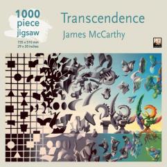 James McCarthy - Transcendence
