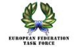 Battlefield Evolution - European Federation Task Force - Loose Miniatures (25mm)