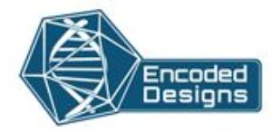 Fantasy Role Playing Games (Encoded Designs)