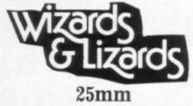 Wizards & Lizards - Loose Miniatures (25mm)